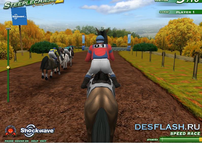 Гонки на конях играть