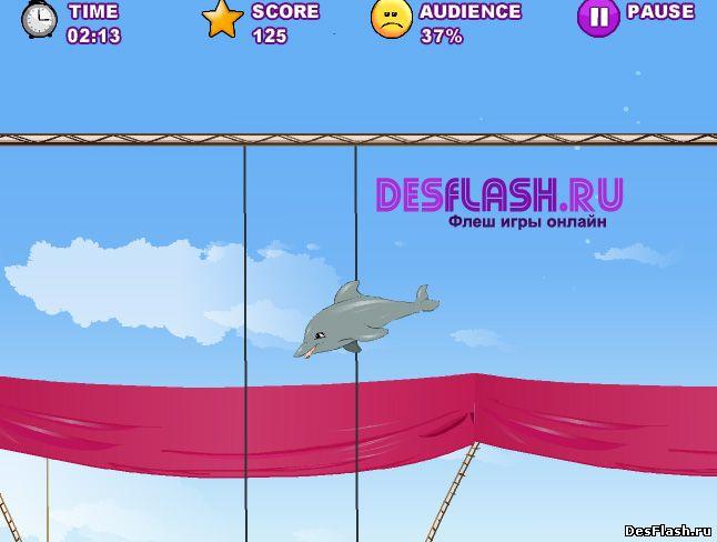 Мое дельфинье представление. My Dolphin Show